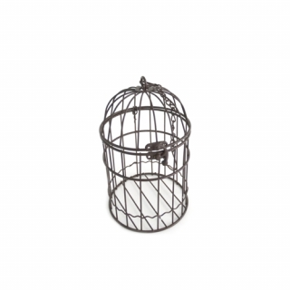 Metal oxide cage